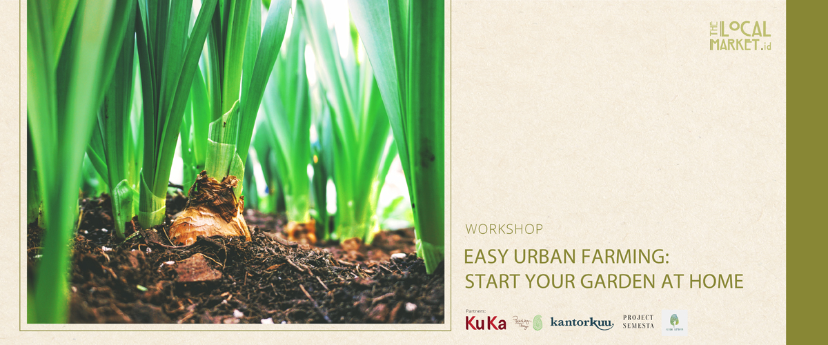 EASY URBAN FARMING: START YOUR GARDEN AT HOME