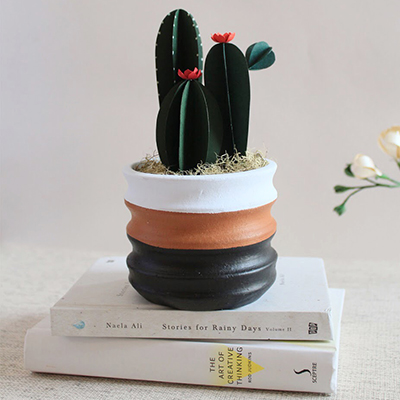 MAKING PAPER CACTI CLASS